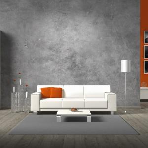 Beton jest kwintesencją prostoty, elegancji i podążania za najnowszymi trendami. Fot. Fox Dekorator