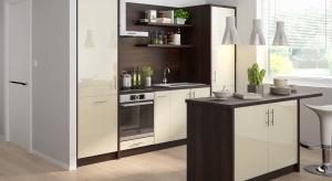 Kuchnia jest jednym z najważniejszych pomieszczeń w każdym domu. Jej urządzenie od podstaw wymaga odpowiedniego przygotowania przestrzeni i bardzo dużej dbałości o detale.
