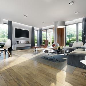 Otwarta przestrzeń i białe ściany optycznie powiększają salon. Drewno w połączeniu z bielą ścian i dodatkami w różnych odcieniach szarości nadają wnętrzu niezwykłej elegancji. Fot. Pracownia Projektowa Archipelag