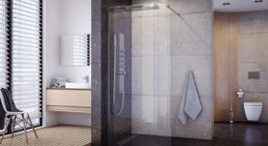Strefa prysznica w nowoczesnej łazience powinna być jednocześnie funkcjonalna i estetyczna.Na rynku dostępnych jest wiele różnorodnych rozwiązań. Sprawdźcie nasze propozycje.