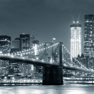 Fototatera z widokiem na Manhattan. Fot. Fotolia
