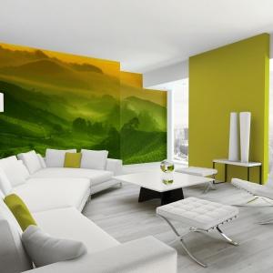 W tym wnętrzu zieleń występuje na jednej ze ścian i w postaci zielono-żółtej fototapety. Fot. Minka.pl