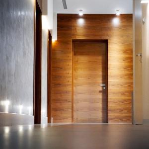 Podłogi i ściany. Wyróżnienie - Drzwi techniczne z zabudową z paneli ściennych/Pol-Skone