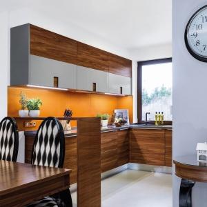 Modna kuchnia w kolorze. Fot. Studio Pinio Max Kuchnie