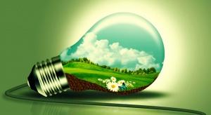 Natura potrzebuje naszej pomocy. Jak być eko? – 7 prostych zasad ekologicznego postępowania w każdym domu.