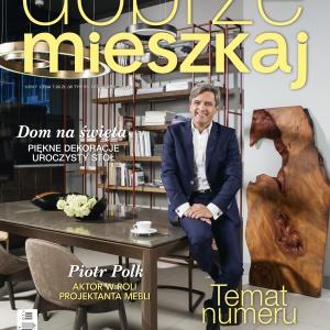 Magazyn Dobrze Mieszkaj 1/2017.