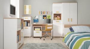 Pokój dziecięcy i młodzieżowy to oaza każdej dorastającej pociechy. Często zdarza się jednak tak, że metraż mieszkania nie pozwala na to, aby dzieci posiadały oddzielne pokoje.