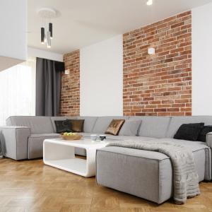 Ściana w salonie. Projekt: Agata Piltz. Fot. Bartosz Jarosz
