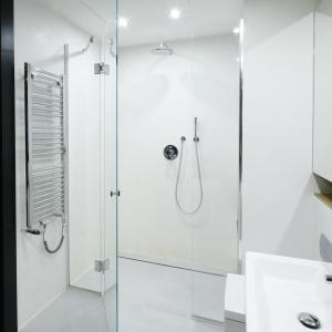 Prysznic bez brodzika. Projekt: Monika i Adam Bronikowscy. Fot. Bartosz Jarosz