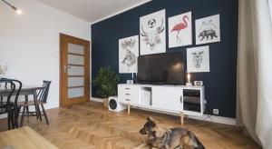 Ela i Mateusz, blogerzy z wnetrznosci.com, to prawdziwie artystyczne dusze. Traktują wnętrza swojego mieszkania jak wielkie płótna, które zapełniają zgodnie z nastrojem i aktualnymi fascynacjami.