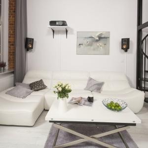 Białe wnętrze: ciekawe propozycje na pokój dzienny. Projekt: Szymon Chudy. Fot. Bartosz Jarosz