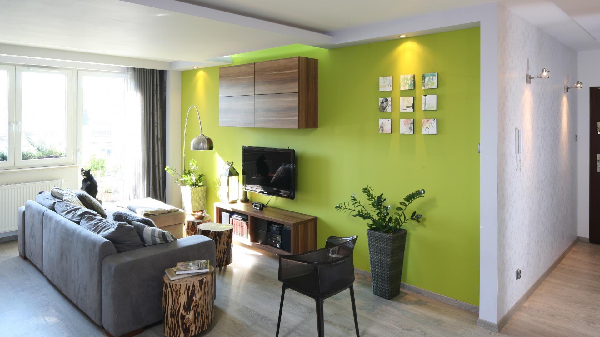 Zielony soczysty kolor ściany telewizyjnej ożywia szaro-białe wnętrze salonu. Projekt: Arkadiusz Grzędzicki. Fot. Bartosz Jarosz