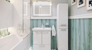 Nowoczesne, klasyczne, w stylu retro. Wśród propozycji producentów mebli do łazienek każdy znajdzie coś dla siebie.