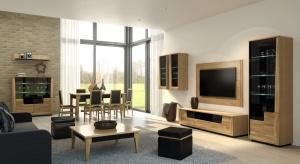 Salon będący jednocześnie jadalnią i strefą relaksu stanowi niezwykle atrakcyjną propozycję dla wszystkich ceniących interesujące rozwiązania aranżacyjne.