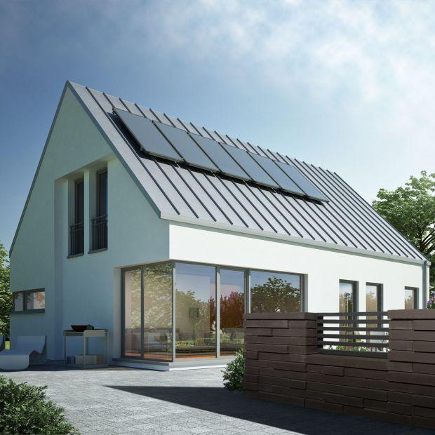 Otoczenie domu: ogrodzenie strukturalne
