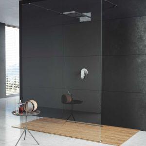 Ścianka prysznicowa walk-in Rio Grande Nigra. Fot. Aquaform