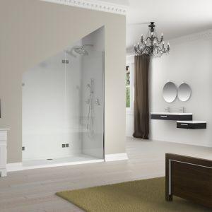 Drzwi do wnęki prysznicowej ze specjalnym wycięciem pod skos z serii Artic. Fot. Riho
