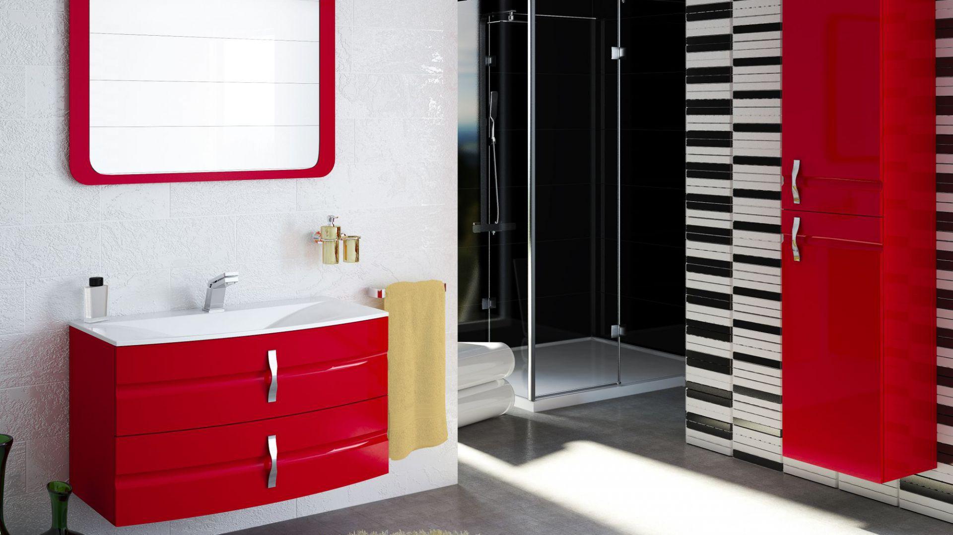 Szafka pod umywalkę, model Lambo firmy Devo, www.devo.pl. Fot. Devo