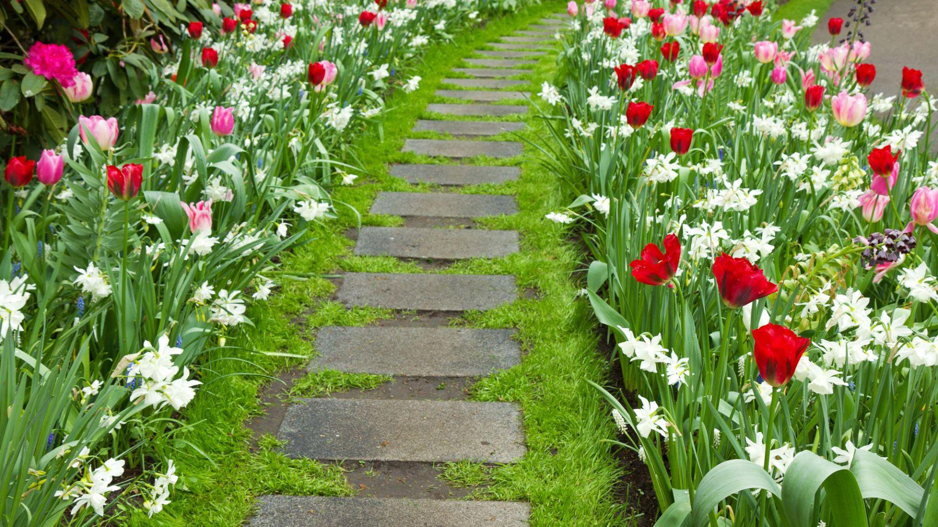 Wiosenne prace ogrodowe. Fot. Shutterstock