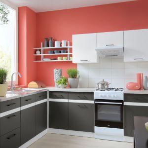 Kolorowa kuchnia. Na zdjęciu: meble z kolekcji firmy Black Red White. Fot. Black Red White