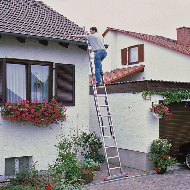 Bezpieczne prace w ogrodzie: wybieramy solidną drabinę