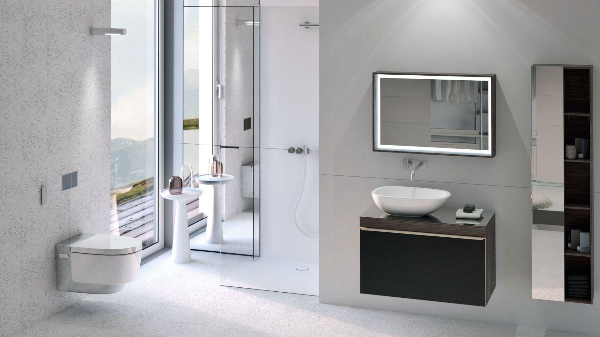 Modele Classic i Comfort toalet myjących Geberit AquaClean Mera są dostępne w kolorze białym lub z pokryciem chromowanym. Fot. Geberit