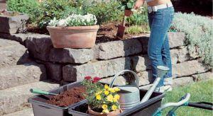 Sadzenie, przycinanie, wycinanie i inne zabiegi pielęgnacyjne – w końcówce maja i czerwcu w ogrodzie nie ma miejsca na odpoczynek. Podpowiadamy, jak ułatwić sobie pracę na działce.