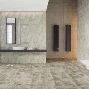 Modna szara łazienka w industrialnym klimacie. Fot. Apavisa