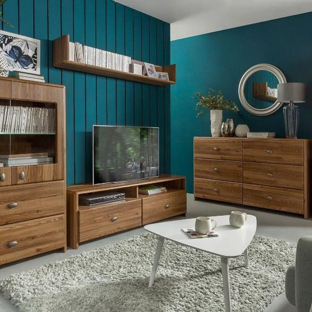 Aranżacja salonu: meble w kolorach drewna i srebra