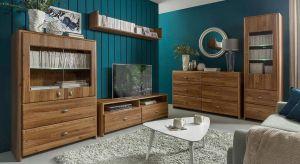 Piękne w swojej prostocie, a zarazem oryginalne meble to połączenie ciepłego odcienia drewna z nowoczesnymi srebrnymi frontami. Kolekcja doskonale będzie prezentować się w salonie, a poszczególne elementy także w jadalni i sypialni.