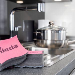 Zmywak Inox Clean & Protect marki Vileda. Fot. Vileda