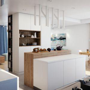 Dom w alwach 2 (G2) – kolekcja: projekty domów parterowych