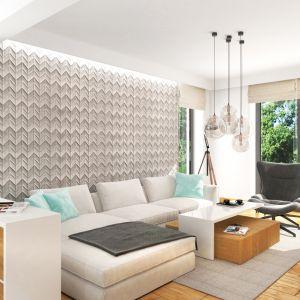 Dom w miłowonkach 3 – kolekcja: projekty domów tanich w budowie ARCHON+