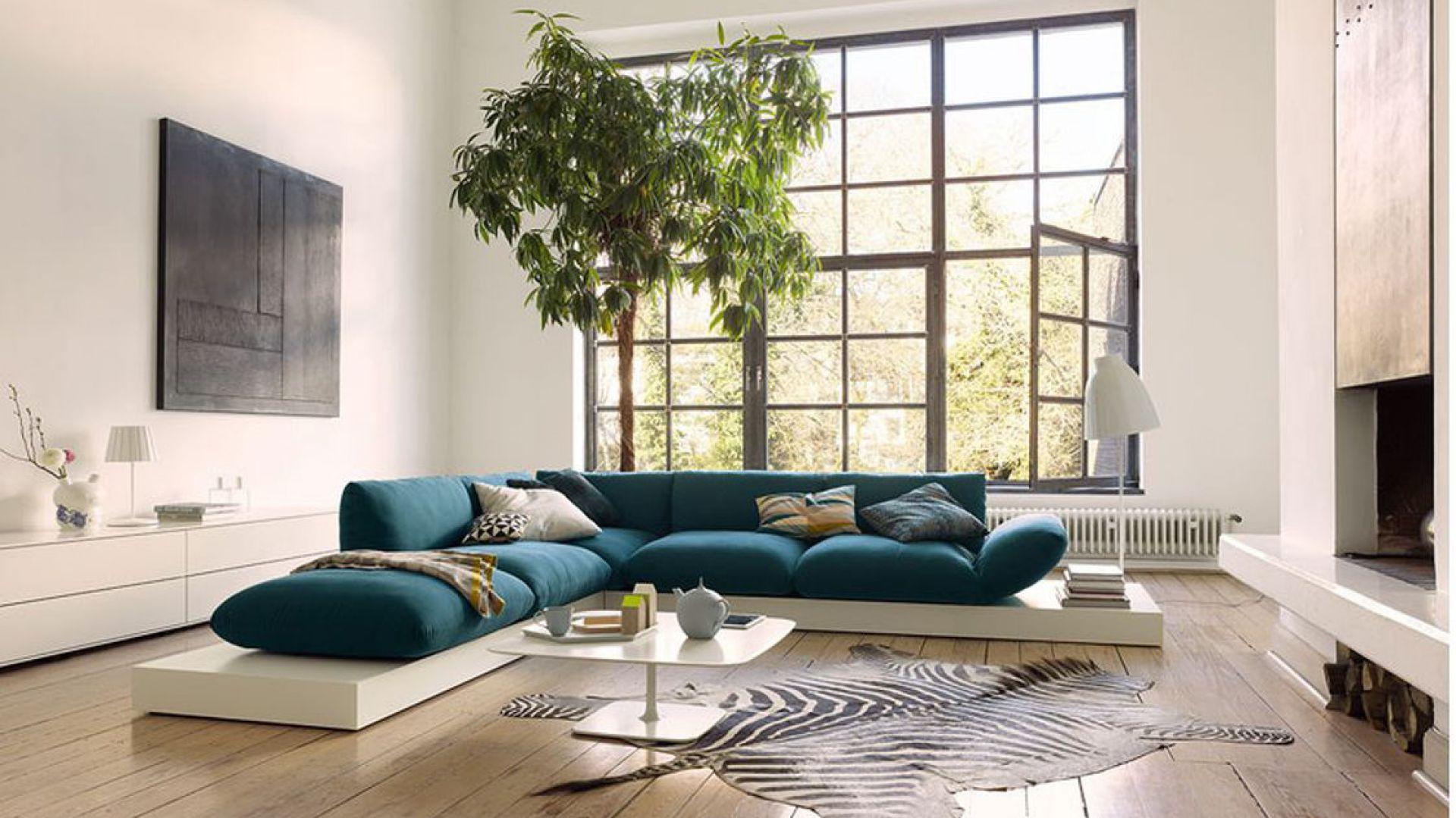 Niebieska tapicerka pięknie komponuje się z białym podestem, na którym zostało umieszczone siedzisko sofy marki Cor. Fot. Galeria Wnętrza