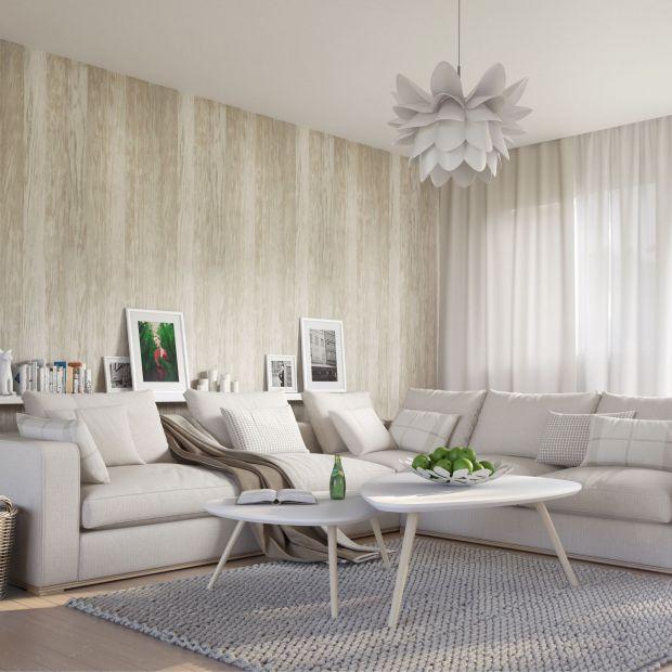 Jasny salon: modne rozwiązania na podłogi i ściany