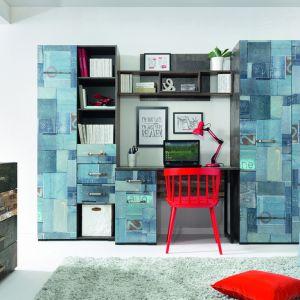 Kolekcja Drago składa się z biurka, komody, regału, szafy oraz wiszącej półki. Pozwala stworzyć profesjonalny i zarazem niekonwencjonalny pokój do nauki dla nastolatka. Fot. Black Red White