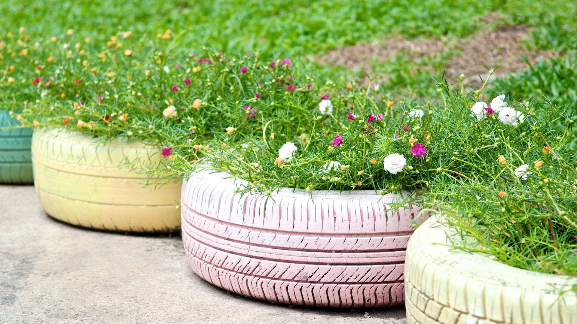 Kwietniki ze starych opon są ładne i trwałe. Fot. Viva Garden