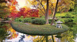 Badania potwierdzają, że Polki przywiązują dużą wagę do kwestii kolorystycznych w swoim otoczeniu, także w przydomowych ogrodach. Co więcej, coraz częściej eksperymentowanie kolorem odbywa się sezonowo, podobnie jak w modzie czy dizajnie.