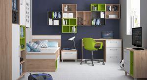 Aby umilić dziecku powrót do szkoły, warto odpowiednio urządzić jego pokój. Nowe meble, wygodne miejsce do nauki i przydatne akcesoria mogą zachęcić dziecko do nauki.