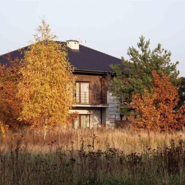 Dom gotowy na jesień: niezbędne naprawy i prace porządkowe