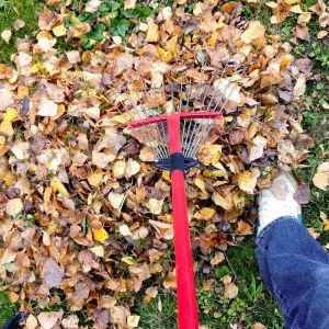 Przygotowanie domu na jesień i zimę: uszczelnianie okien i drzwi, naprawy elewacji, prace w ogrodzie. Fot. Arsanit