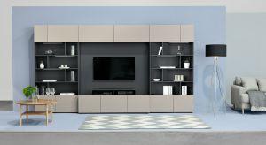 Kolekcja Muro to niezwykle praktyczny sposób na funkcjonalny salon utrzymany w ponadczasowym stylu minimalistycznym. W skład systemu wchodzą nowoczesne zestawy TV, z panelem, który umożliwia podwieszenie telewizora, bez potrzeby kucia ścian i dodatk
