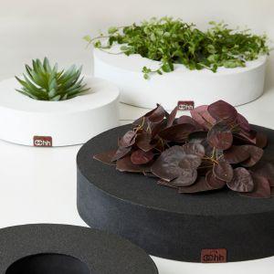 Misy florystyczne z kolekcji GRAN wykonanej z papieru imitującego wyglądem asfalt. Cena: 99-149 zł. Fot. planB