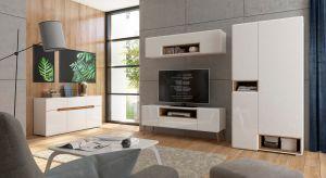 Nowa kolekcjamebli do salonu to zabawa kolorem i prostą formą. Dzięki połączeniu geometrycznych form z barwnymi akcentami minimalistyczne bryły zyskały oryginalny styl.