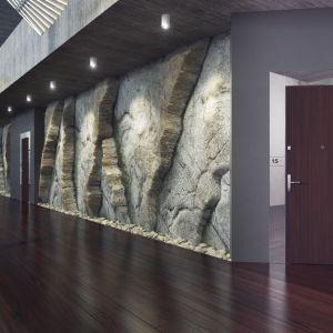 Drzwi Gradara, kolekcja HIGHLINE/Entra. Produkt zgłoszony do konkursu Dobry Design 2018.