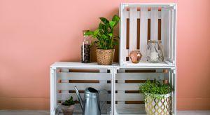 Wystarczy odpowiednia farba i odrobina chęci, aby stare meble zyskały zupełnie nowe życie. Zobacz, jak możesz je odnowić.