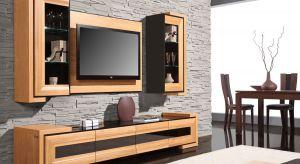 Meble RTV należą do podstawowego umeblowania prawie w każdym domu. Popularne meble skrzyniowe są znakiem naszych czasów.