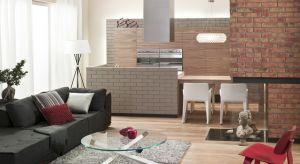Dzięki parametrom technicznym klinkieru, cegły i płytki sprawdzają się w salonach i strefach dziennych, a także w pomieszczeniach takich jak kuchnie czy salony kąpielowe, gdzie panuje większa wilgoć.