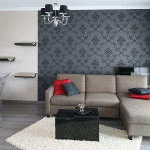 Pomysły na ściany w salonie. Projekt: Joanna Nawrocka. Fot. Bartosz Jarosz