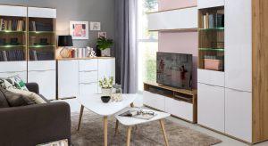 Podczas urządzania domu czy mieszkania często stoimy przed trudnym wyborem aranżacji przestrzeni w modnym i jednocześnie funkcjonalnym stylu.
